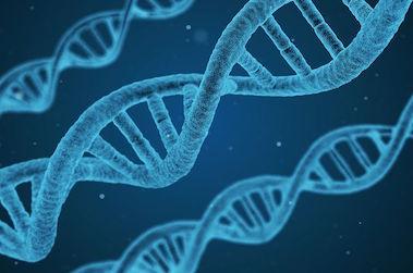 Le Rôle des CHU dans la recherche biomédicale doit faire l'objet de réformes